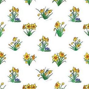 Miniature Yellow Daffodils