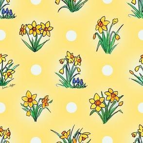 Little sunny yellow daffodils