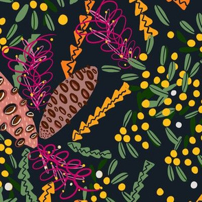australian native plants // banksia // golden wattle // grevillea
