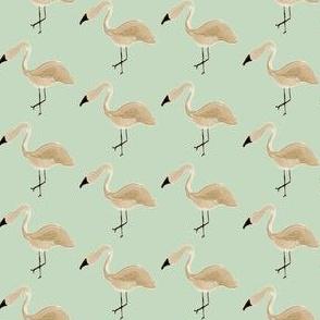 grey flamingo on mint