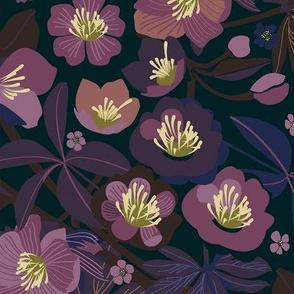 Moody helleborus | purple