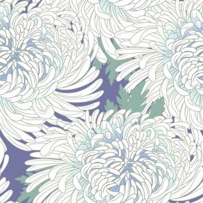 Chrysanthemum Cool