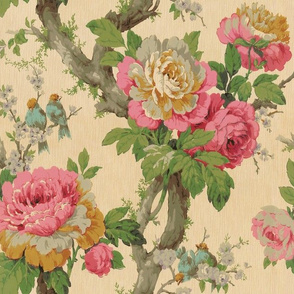cabbage patch rose wallpaper