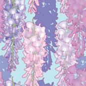 Wisteria Spring