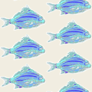 oodles blue fish ivory _2