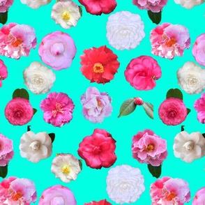 Flowers on Teal