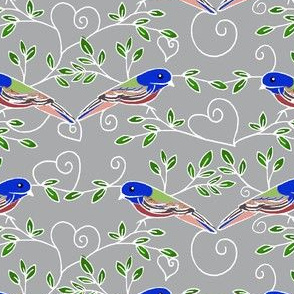 Painted Bunting Love / Grey w/ white lines