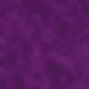 moody poppies purple