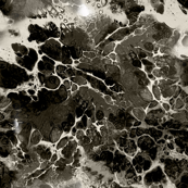 BW Flowing cells 2