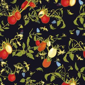 black_realistic_tomatoe_ballet_seaml_stock