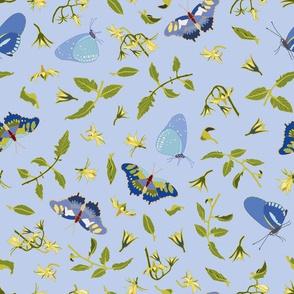 blue_blosom_butterfly_01_seaml_stock