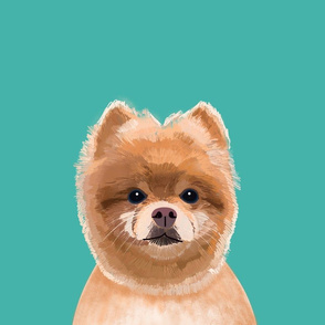 """18"""" Pomeranian Dog Pillow with cut lines - dog pillow panel, dog pillow, pillow cut and sew -"""