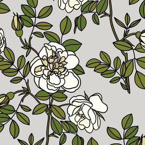 Climbing roses on grey