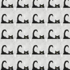 mylittlecat