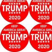 Trump Circle 2020