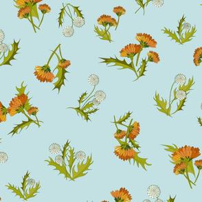 Marigolds and Dandelions Sky-01