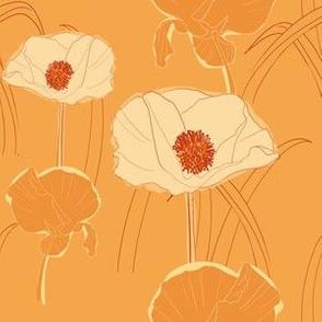 Poppies in Orange