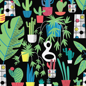 Cacti Black