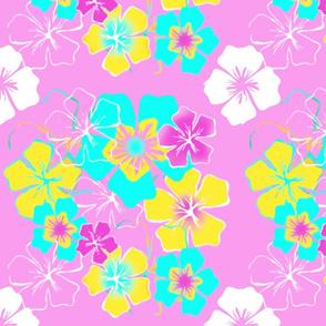 hibiscus dream