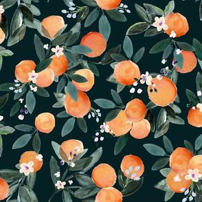 Dear Clementine_oranges - dark