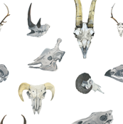 Watercolour Animal Skulls {small}