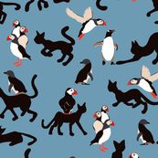 Come play with me, Puffins and penguins on blue