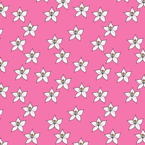 Lemon flower repeat  pink