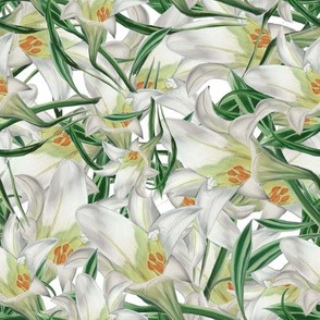 Debs Lily Collage