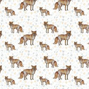 Auburn Foxes