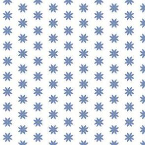 03-01-2019 Blue Flowers