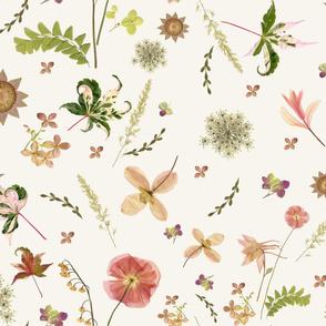Pink Meadow Flowers lg