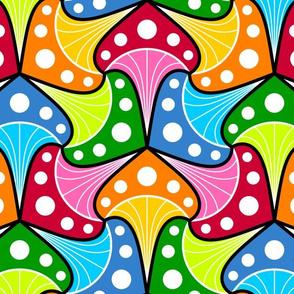 08579716 : © fungi 3m : multi
