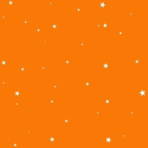 woollypetals starry eyed pumpkin