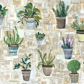 Home Potted Plants {Large}