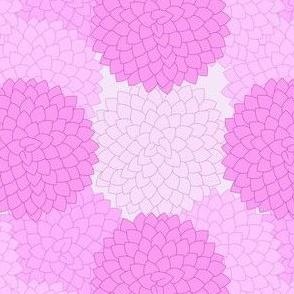 POM POM flower azalea pink