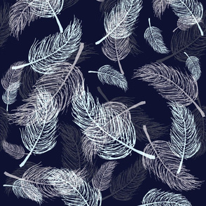 Blue Feathers