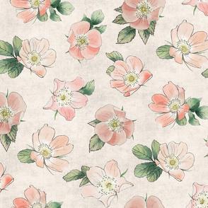 Wild Rose on Blush Linen, girl baby kids large flower non-directional