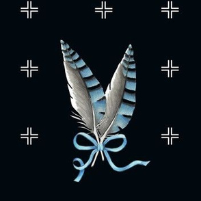 Rblue_jay_feathers_w_plusv3_shop_thumb