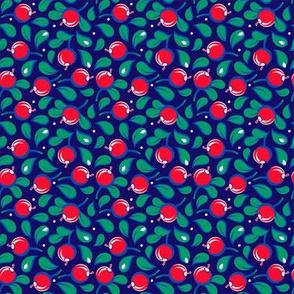 Cranberries on dark blue