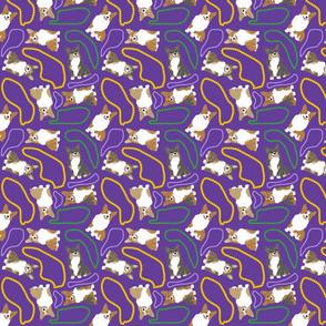 Tiny Pembroke Welsh Corgi - Mardi Gras