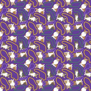 Tiny fluffy Pembroke Welsh Corgi - Mardi Gras