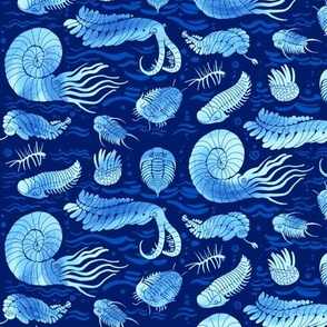 Cambrian sea animals: Trilobites, Anomalocaris and others