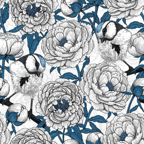 White peonies and blue tit birds