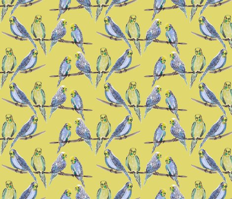 Rrrrbudgies-yellow_shop_preview