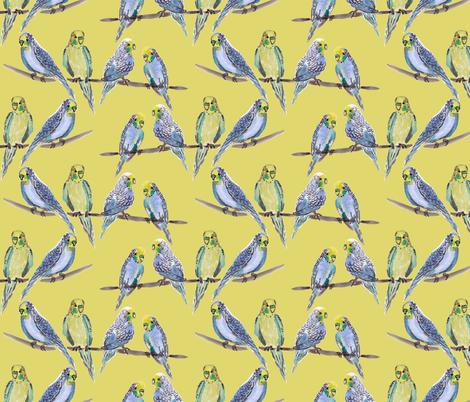 budgies YELLOW fabric by laurawrightstudio on Spoonflower - custom fabric