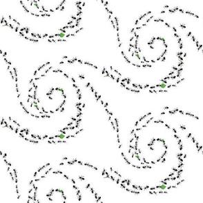 Ant's pattern