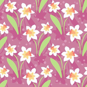 daffodils on purple