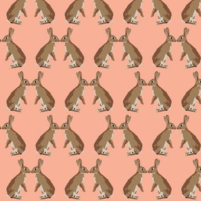 Bunny kisses in coral