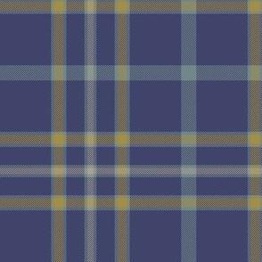 """Alaska modern flag tartan, 6"""" weathered"""