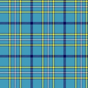 "Alaska ancient flag tartan, 3"" bright"